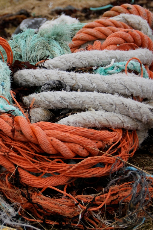 ropes washed up on shore, norway