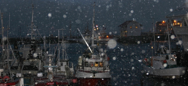 boats and snow (2)